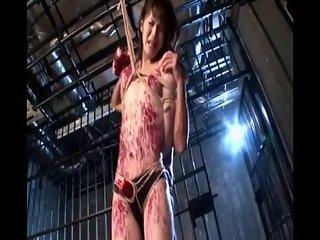 japanese shemale teen in bondage
